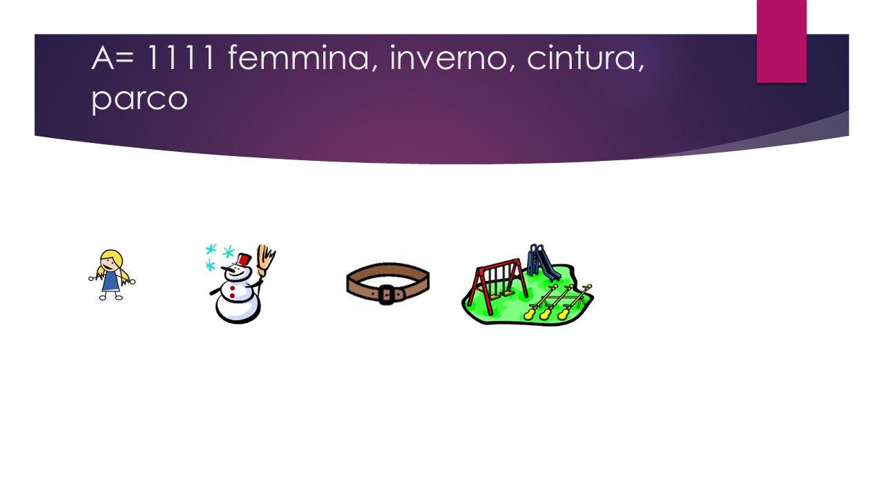 A= 1111 femmina, inverno, cintura, parco
