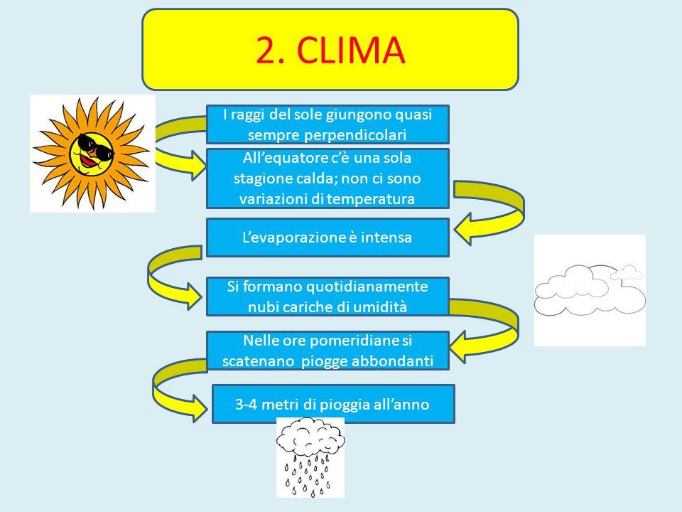 2. CLIMA I raggi del sole giungono quasi sempre perpendicolari Allequatore cè una sola stagione calda; non ci sono variazioni di temperatura Levaporaz