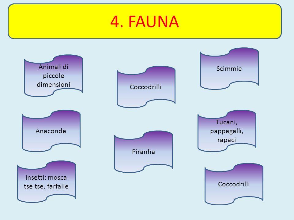 4. FAUNA Coccodrilli Anaconde Scimmie Tucani, pappagalli, rapaci Piranha Animali di piccole dimensioni Insetti: mosca tse tse, farfalle