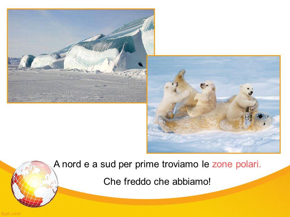 A nord e a sud per prime troviamo le zone polari. Che freddo che abbiamo!