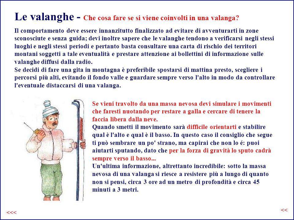 Le valanghe - Che cosa fare se si viene coinvolti in una valanga.
