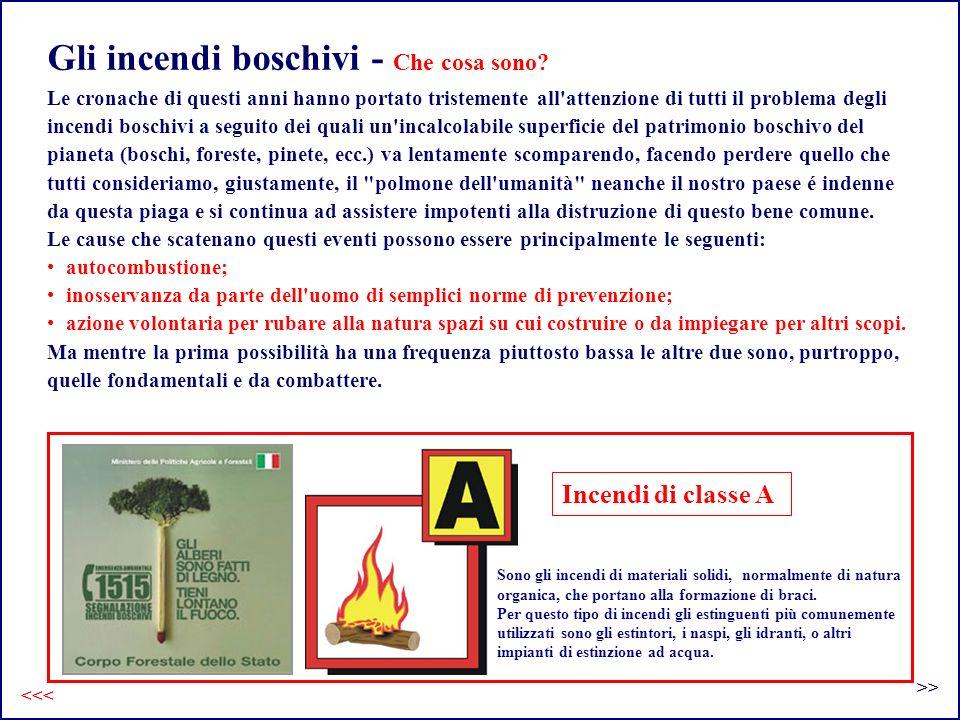 Gli incendi boschivi - Che cosa sono.