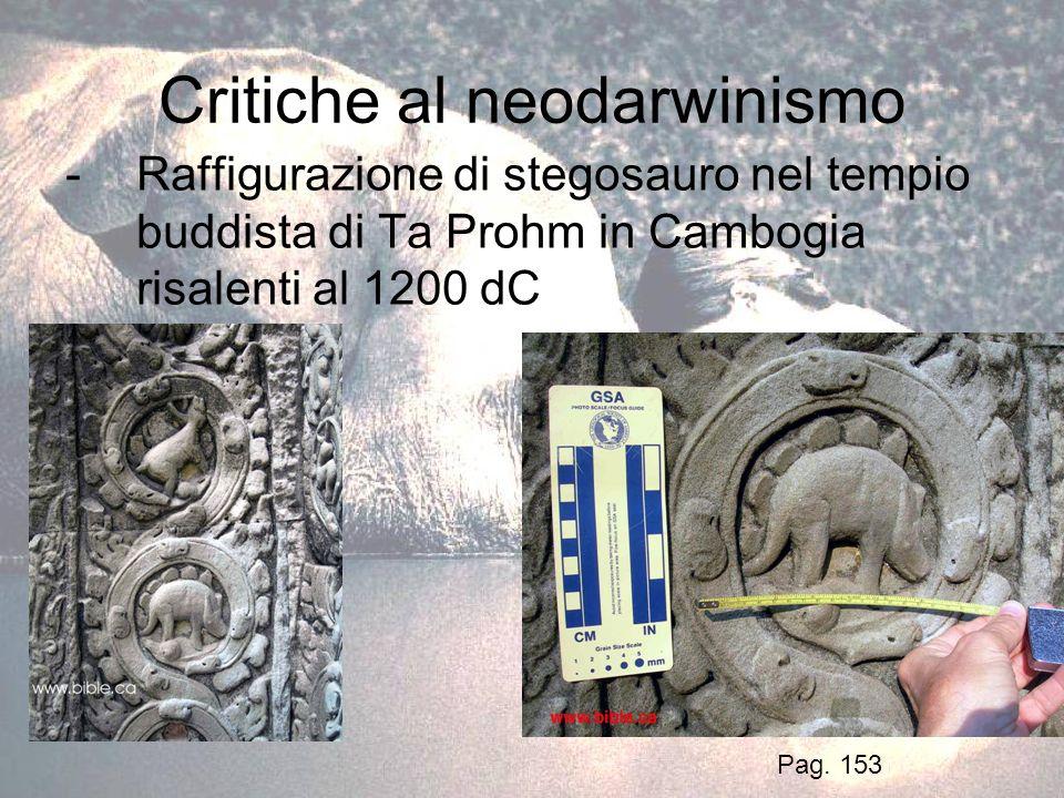 Critiche al neodarwinismo -Raffigurazione di stegosauro nel tempio buddista di Ta Prohm in Cambogia risalenti al 1200 dC Pag. 153