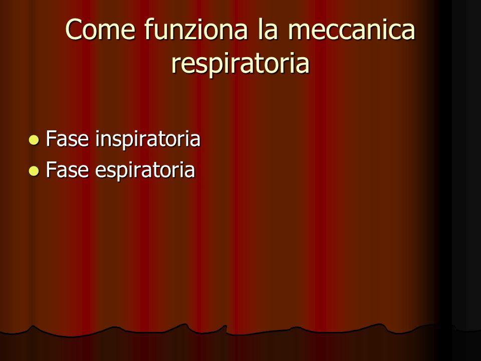 Come funziona la meccanica respiratoria Fase inspiratoria Fase inspiratoria Fase espiratoria Fase espiratoria