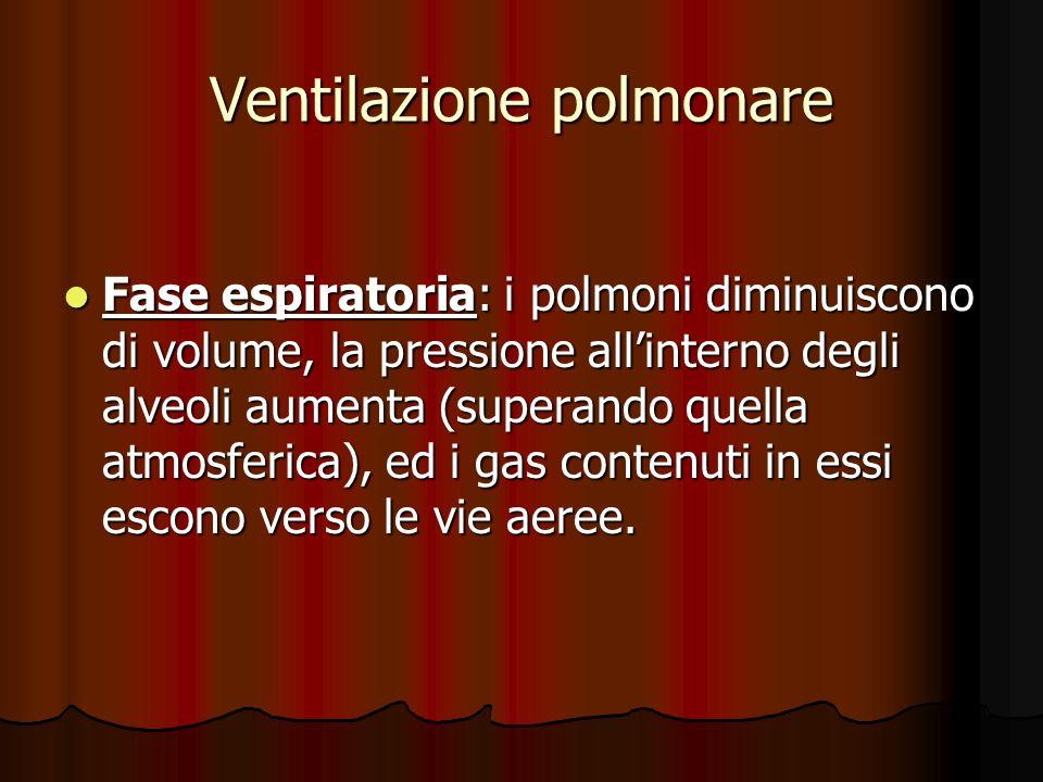 Ventilazione polmonare Fase espiratoria: i polmoni diminuiscono di volume, la pressione allinterno degli alveoli aumenta (superando quella atmosferica), ed i gas contenuti in essi escono verso le vie aeree.