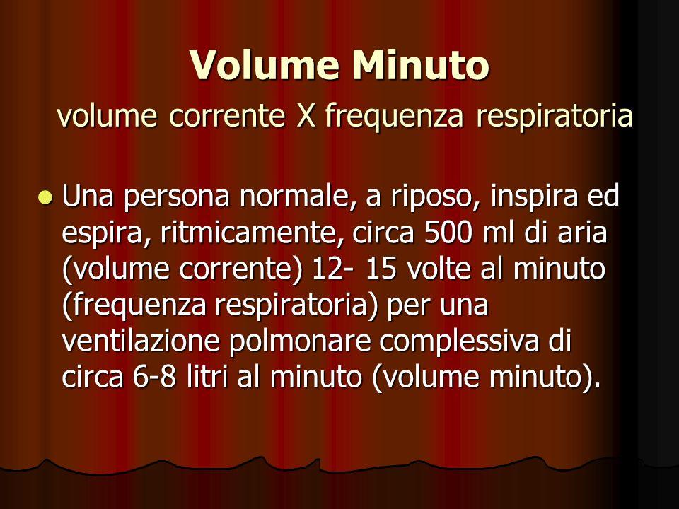 Volume Minuto volume corrente X frequenza respiratoria Una persona normale, a riposo, inspira ed espira, ritmicamente, circa 500 ml di aria (volume corrente) 12- 15 volte al minuto (frequenza respiratoria) per una ventilazione polmonare complessiva di circa 6-8 litri al minuto (volume minuto).