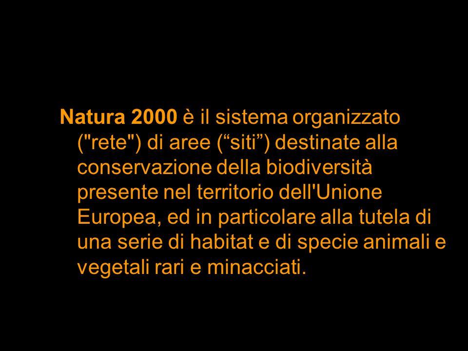 Natura 2000 è il sistema organizzato (