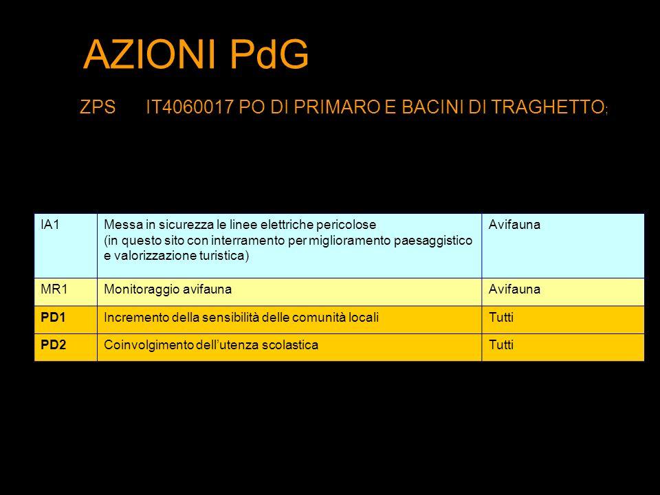 AZIONI PdG ZPSIT4060017 PO DI PRIMARO E BACINI DI TRAGHETTO ; IA1Messa in sicurezza le linee elettriche pericolose (in questo sito con interramento pe