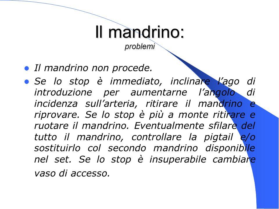 Genova 15 Nov 2003 Il mandrino: problemi Il mandrino non procede. Se lo stop è immediato, inclinare lago di introduzione per aumentarne langolo di inc