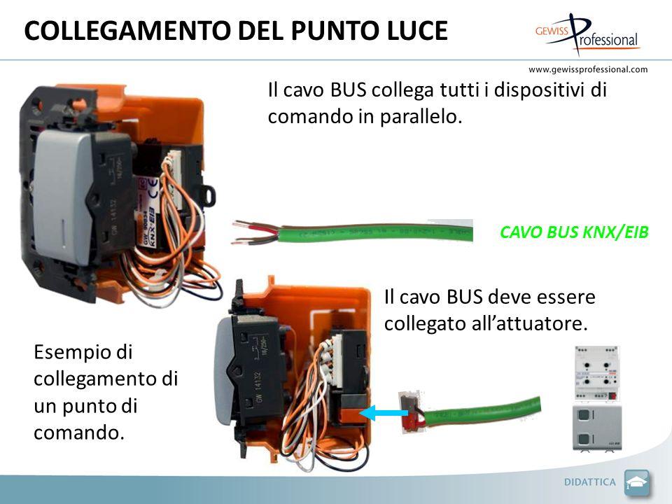 COLLEGAMENTO DEL PUNTO LUCE CAVO BUS KNX/EIB Il cavo BUS collega tutti i dispositivi di comando in parallelo. Esempio di collegamento di un punto di c