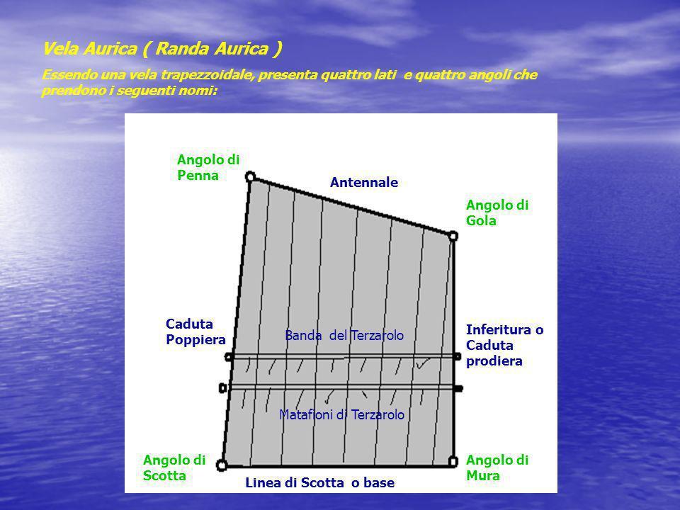 Vela Aurica ( Randa Aurica ) Essendo una vela trapezzoidale, presenta quattro lati e quattro angoli che prendono i seguenti nomi: Antennale Linea di S