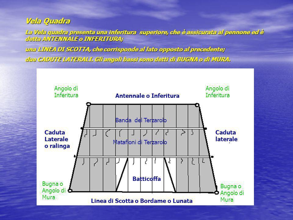 Vela Quadra La Vela quadra presenta una inferitura superiore, che è assicurata al pennone ed è detta ANTENNALE o INFERITURA; una LINEA DI SCOTTA, che