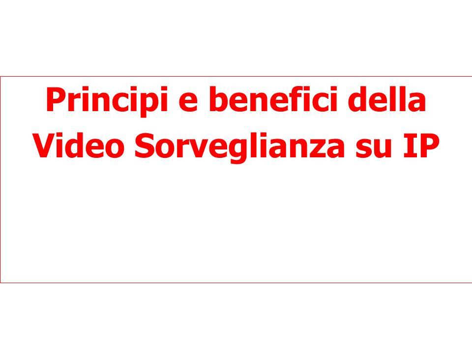 Principi e benefici della Video Sorveglianza su IP