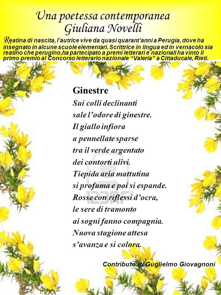 Una poetessa contemporanea Giuliana Novelli R eatina di nascita, lautrice vive da quasi quarantanni a Perugia, dove ha insegnato in alcune scuole elem
