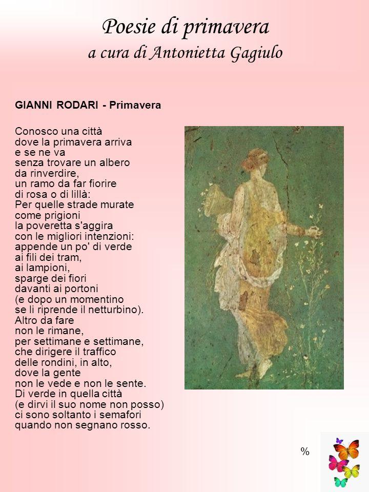 Poesie di primavera a cura di Antonietta Gagiulo GIANNI RODARI - Primavera Conosco una città dove la primavera arriva e se ne va senza trovare un albe