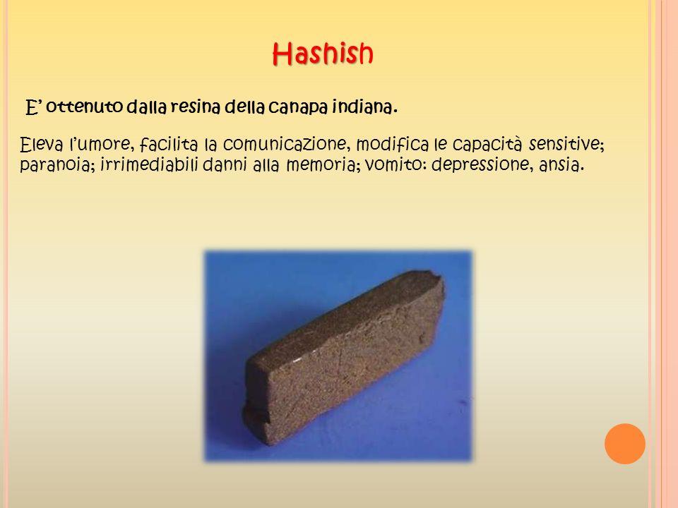 Hashis Hashish E ottenuto dalla resina della canapa indiana. Eleva lumore, facilita la comunicazione, modifica le capacità sensitive; paranoia; irrime