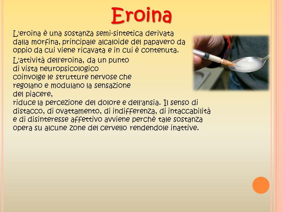 L'eroina è una sostanza semi-sintetica derivata dalla morfina, principale alcaloide del papavero da oppio da cui viene ricavata e in cui è contenuta.