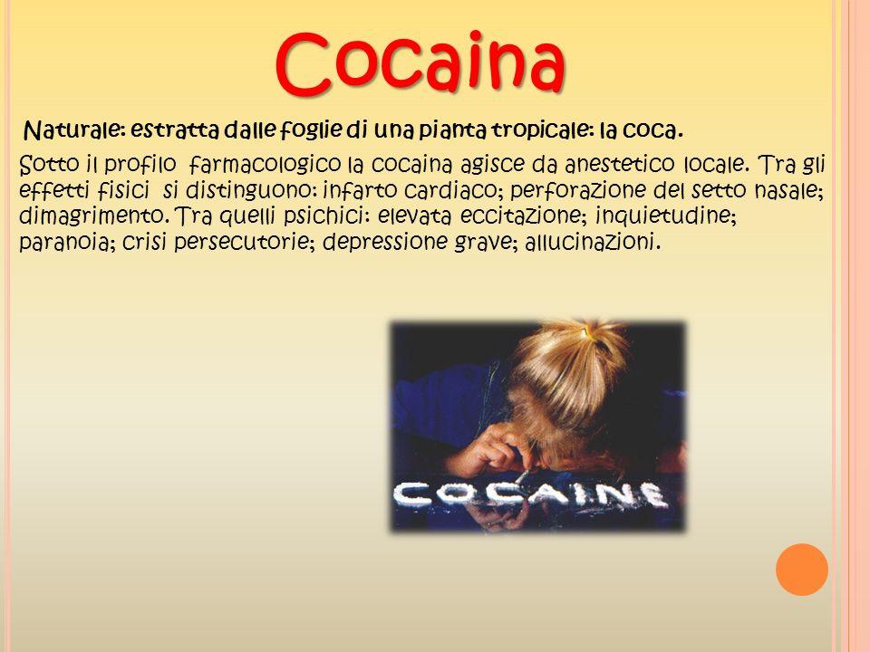 Cocaina Naturale: estratta dalle foglie di una pianta tropicale: la coca. Sotto il profilo farmacologico la cocaina agisce da anestetico locale. Tra g