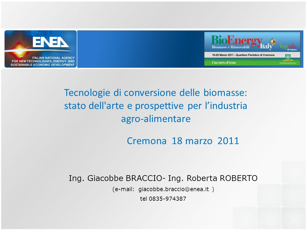 Cremona 18 marzo 2011 Tecnologie di conversione delle biomasse: stato dell'arte e prospettive per lindustria agro-alimentare Ing. Giacobbe BRACCIO- In