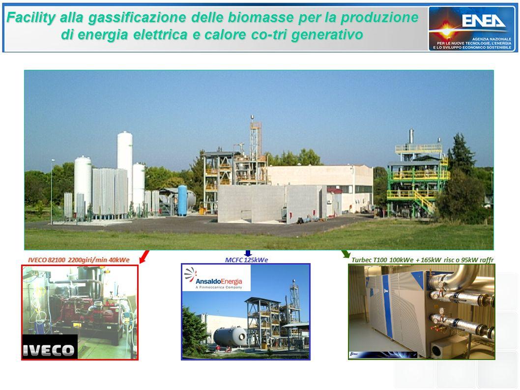 Facility alla gassificazione delle biomasse per la produzione di energia elettrica e calore co-tri generativo IVECO 82100 2200giri/min 40kWe MCFC 125kWe Turbec T100 100kWe + 165kW risc o 95kW raffr