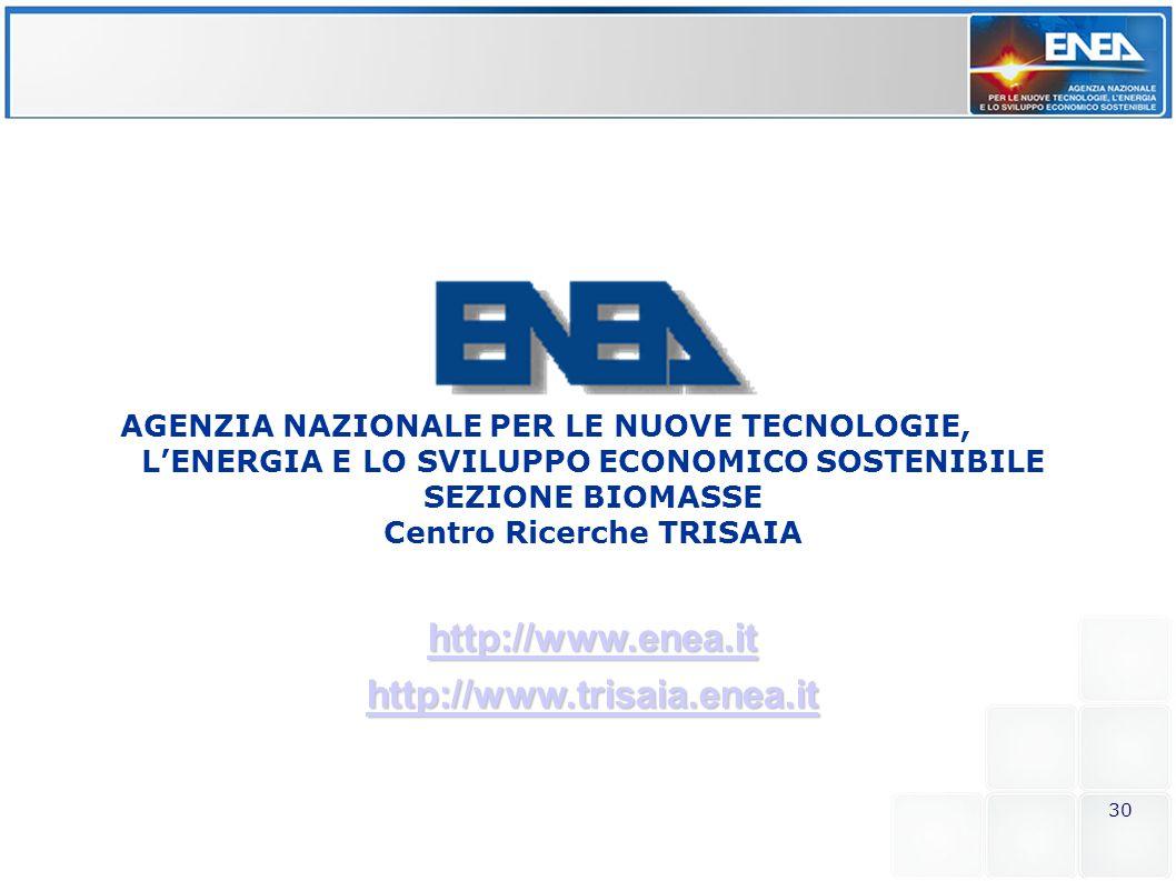 30 http://www.enea.it http://www.trisaia.enea.it AGENZIA NAZIONALE PER LE NUOVE TECNOLOGIE, LENERGIA E LO SVILUPPO ECONOMICO SOSTENIBILE SEZIONE BIOMA