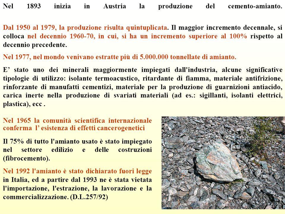 Nel 1893 inizia in Austria la produzione del cemento-amianto. Dal 1950 al 1979, la produzione risulta quintuplicata. Il maggior incremento decennale,