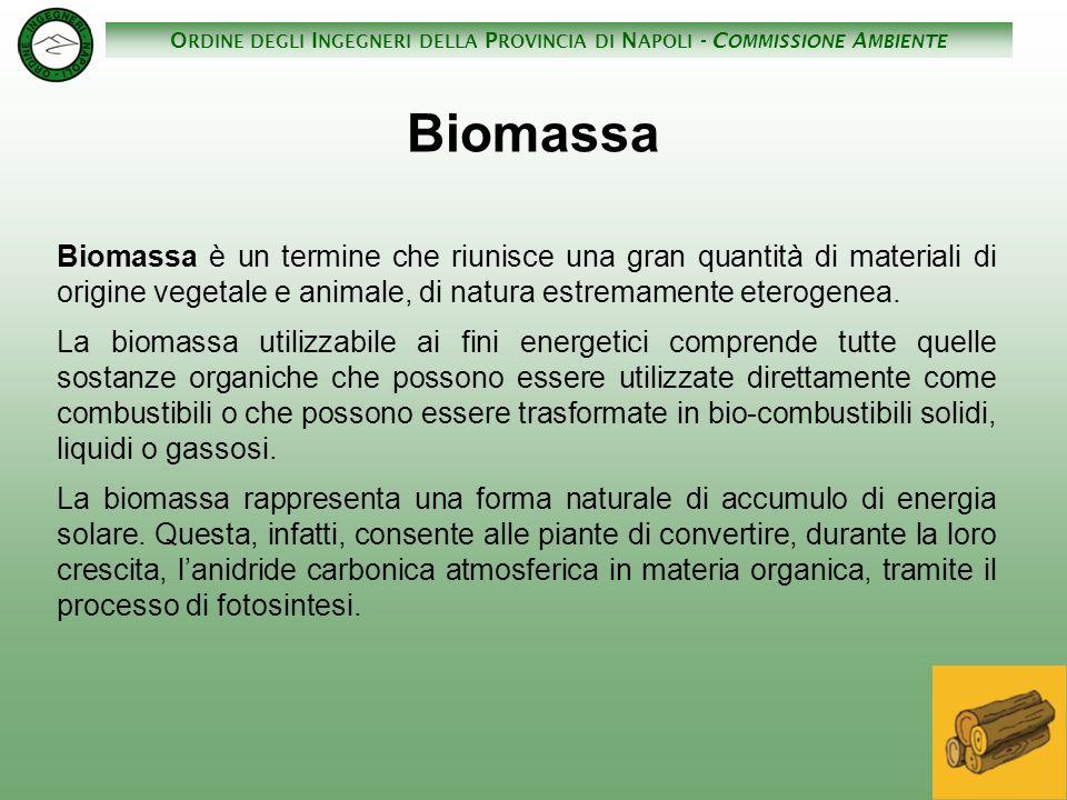 O RDINE DEGLI I NGEGNERI DELLA P ROVINCIA DI N APOLI - C OMMISSIONE A MBIENTE Biomassa Biomassa è un termine che riunisce una gran quantità di materia