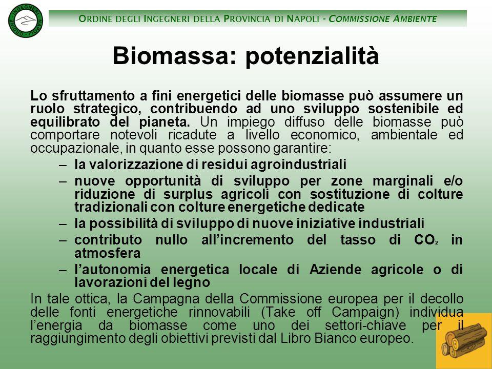 O RDINE DEGLI I NGEGNERI DELLA P ROVINCIA DI N APOLI - C OMMISSIONE A MBIENTE Biomassa: potenzialità Lo sfruttamento a fini energetici delle biomasse