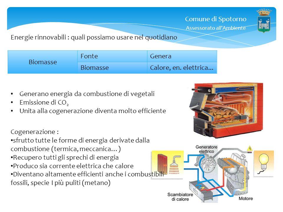 Comune di Spotorno Assessorato allAmbiente Caldaie a biomassa : pellets, legna etc… Cogenerazione : utilizzo efficiente dellenergia, cioè con la stess