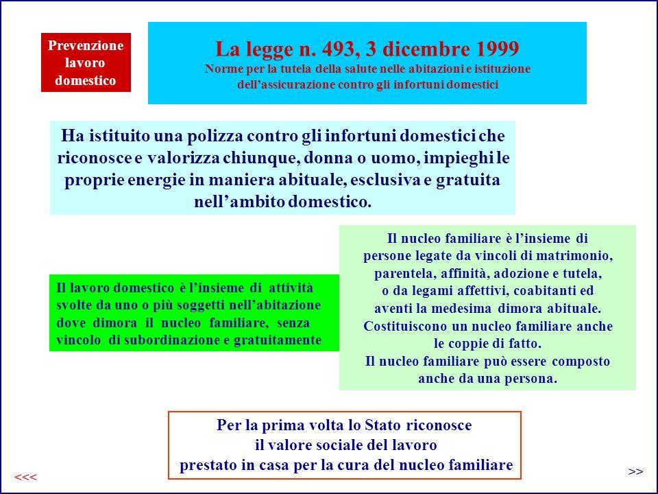 La legge n. 493, 3 dicembre 1999 Norme per la tutela della salute nelle abitazioni e istituzione dellassicurazione contro gli infortuni domestici Per