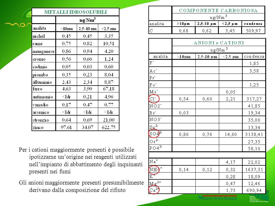 Per i cationi maggiormente presenti è possibile ipotizzarne unorigine nei reagenti utilizzati nellimpianto di abbattimento degli inquinanti presenti nei fumi Gli anioni maggiormente presenti presumibilmente derivano dalla composizione del rifiuto
