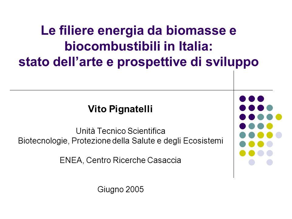 Le filiere energia da biomasse e biocombustibili in Italia: stato dellarte e prospettive di sviluppo Vito Pignatelli Unità Tecnico Scientifica Biotecn