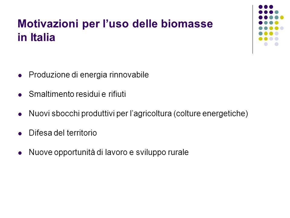 Motivazioni per luso delle biomasse in Italia Produzione di energia rinnovabile Smaltimento residui e rifiuti Nuovi sbocchi produttivi per lagricoltur