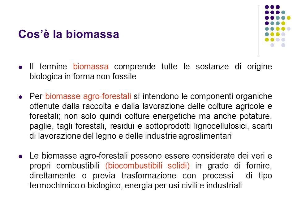 Cosè la biomassa Il termine biomassa comprende tutte le sostanze di origine biologica in forma non fossile Per biomasse agro-forestali si intendono le