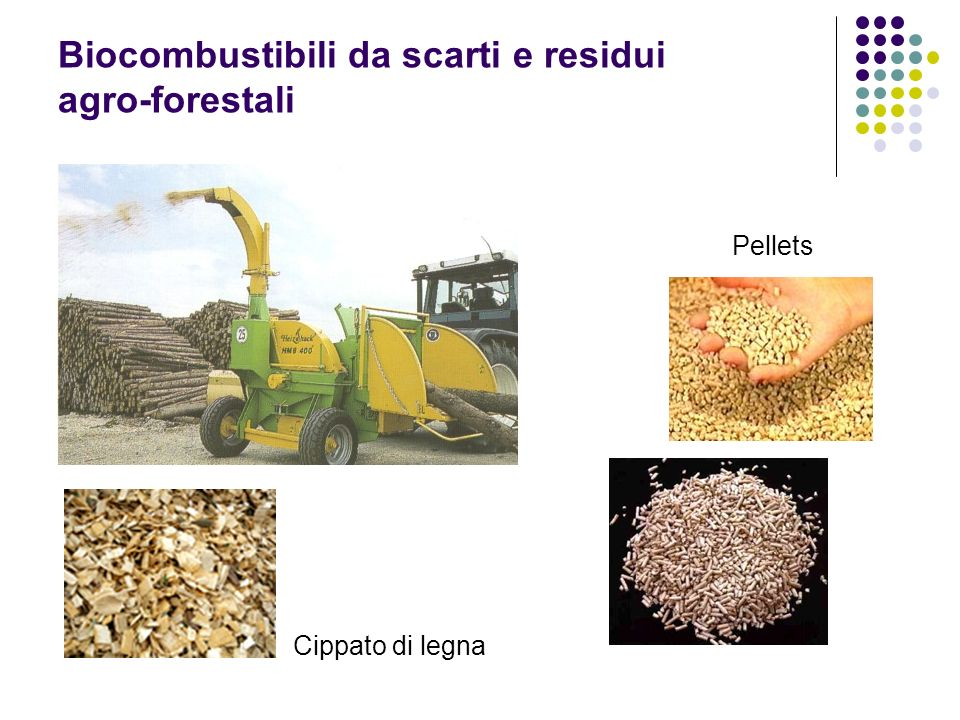 Biocombustibili da scarti e residui agro-forestali Pellets Cippato di legna