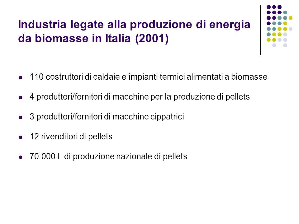 Industria legate alla produzione di energia da biomasse in Italia (2001) 110 costruttori di caldaie e impianti termici alimentati a biomasse 4 produtt