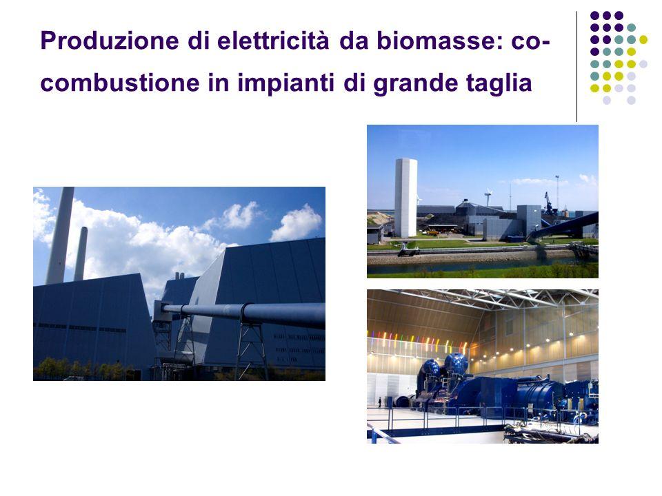 Produzione di elettricità da biomasse: co- combustione in impianti di grande taglia