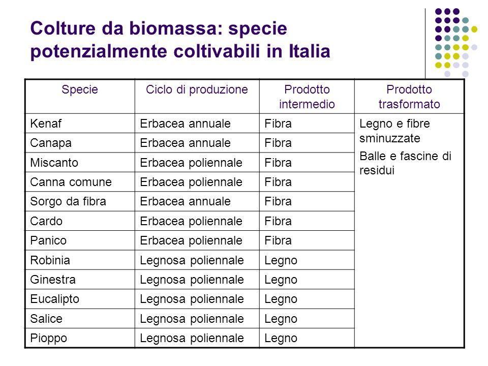Colture da biomassa: specie potenzialmente coltivabili in Italia SpecieCiclo di produzioneProdotto intermedio Prodotto trasformato KenafErbacea annual