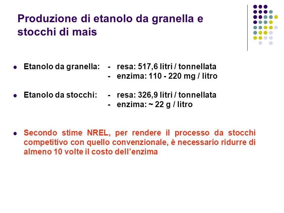 Produzione di etanolo da granella e stocchi di mais Etanolo da granella: - resa: 517,6 litri / tonnellata - enzima: 110 - 220 mg / litro Etanolo da st