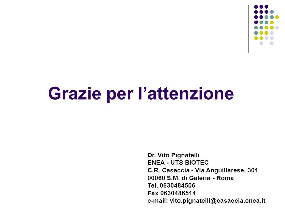 Grazie per lattenzione Dr. Vito Pignatelli ENEA - UTS BIOTEC C.R. Casaccia - Via Anguillarese, 301 00060 S.M. di Galeria - Roma Tel. 0630484506 Fax 06