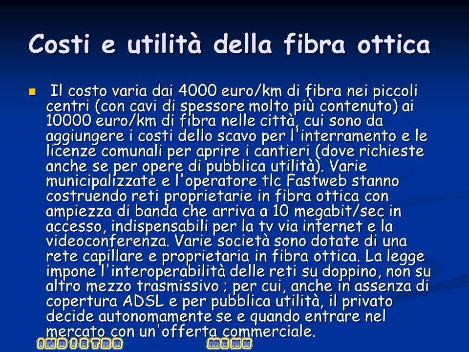 Costi e utilità della fibra ottica Il costo varia dai 4000 euro/km di fibra nei piccoli centri (con cavi di spessore molto più contenuto) ai 10000 eur
