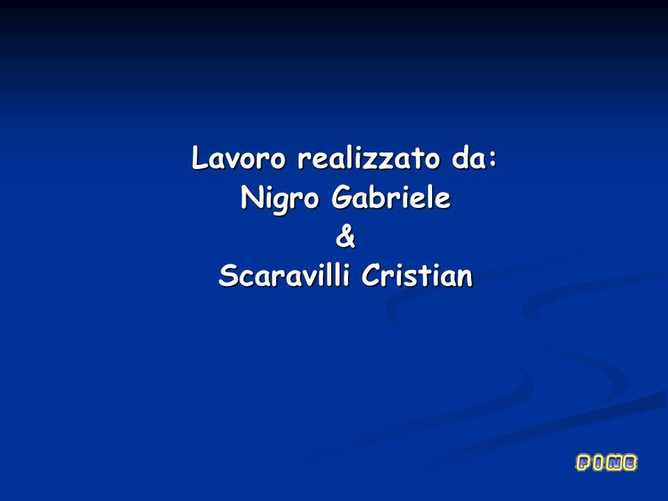 Lavoro realizzato da: Nigro Gabriele & Scaravilli Cristian