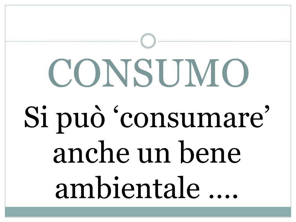 CONSUMO Si può consumare anche un bene ambientale ….