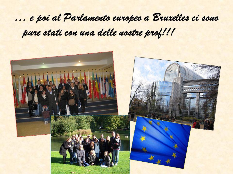 Gli studenti della facoltà organizzano ogni anno una simulazione del parlamento europeo; Hanno fondato unassociazione che si chiama R es politica che per il 2010 ha organizzato un ciclo di conferenze sulla costituzione italiana e la conferenza per la festa dellEuropa; Proprio in questo mese si recheranno alle istituzioni europee e alla Nato a Bruxelles!