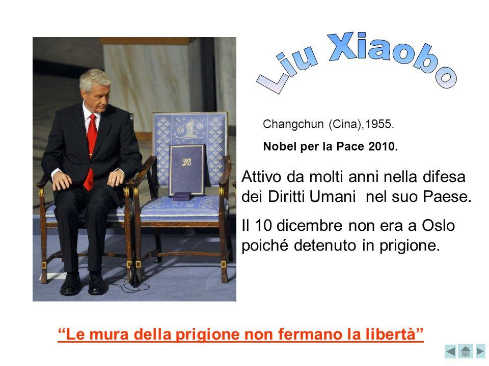 Changchun (Cina),1955. Nobel per la Pace 2010. Attivo da molti anni nella difesa dei Diritti Umani nel suo Paese. Il 10 dicembre non era a Oslo poiché