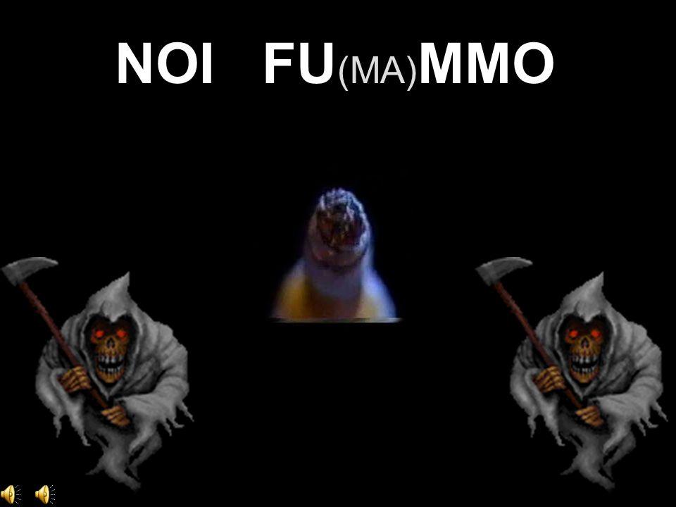 NOI FU (MA) MMO