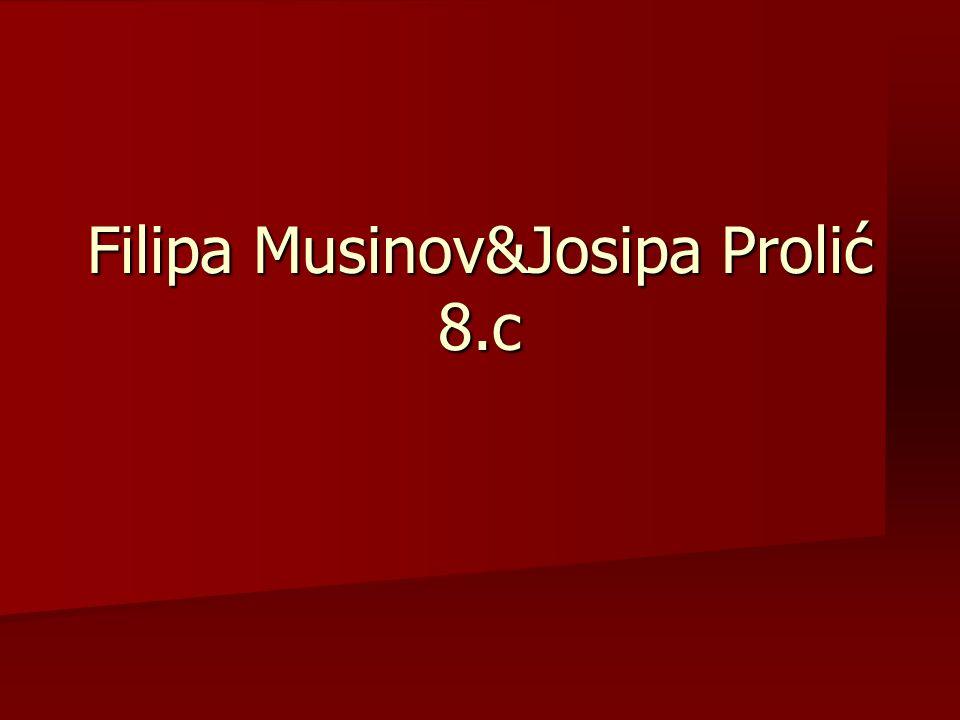 Filipa Musinov&Josipa Prolić 8.c