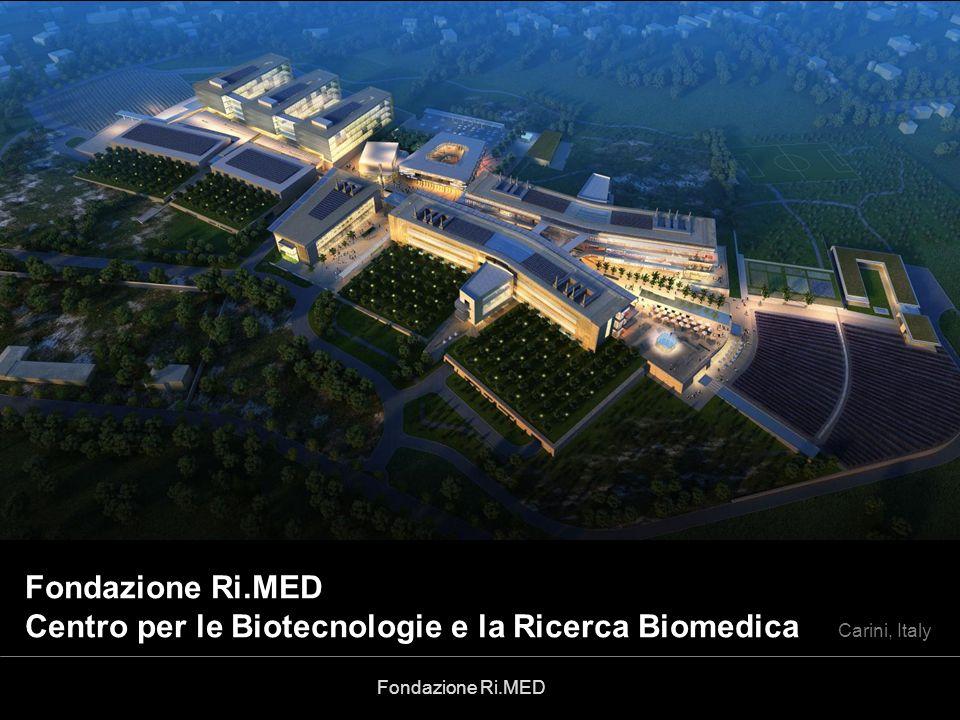 Gruppo di Progettazione Fondazione Ri.MED Prof. Giovanni Randazzo
