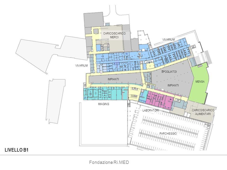 CARICO/SCARICO ALIMENTARI CARICO/SCARICO MERCI VIVARIUM MENSA IMPIANTI IMAGING LABORATORI SPOGLIATOI PARCHEGGIO LIVELLO B1 VIVARIUM Fondazione Ri.MED