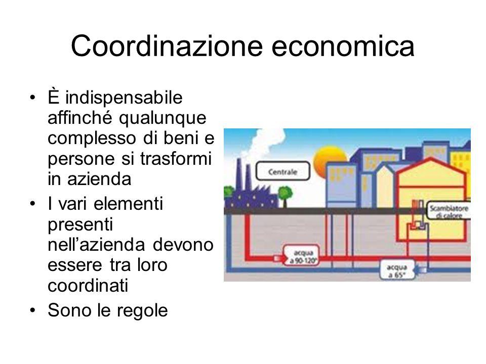 Coordinazione economica È indispensabile affinché qualunque complesso di beni e persone si trasformi in azienda I vari elementi presenti nellazienda d